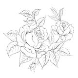 Single black rose ink painted. Royalty Free Stock Photography