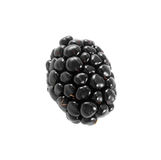 Single blackberry isolated Royalty Free Stock Images