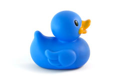 Single blue rubber duck. Side view isolated over white royalty free stock photography