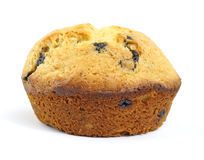 Single blueberry muffin Stock Photography