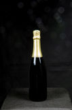 Single bottle of sparkling wine Royalty Free Stock Photo