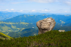 Single boulder on the background of the green valley Stock Image