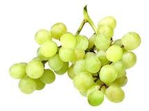 Branch of fresh green grape Stock Photo
