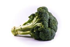 Single Brocoli Stem Top Bush Vegetable Fresh Cooking Raw Ingredi Royalty Free Stock Photos