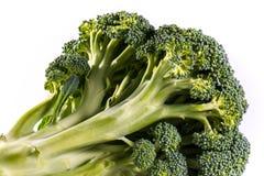 Single Brocoli Stem Top Bush Vegetable Fresh Cooking Raw Ingredi Stock Photo