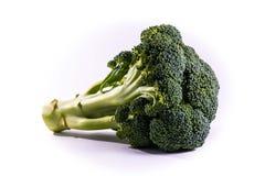 Single Brocoli Stem Top Bush Vegetable Fresh Cooking Raw Ingredi Royalty Free Stock Photography