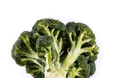 Single Brocoli Stem Top Bush Vegetable Fresh Cooking Raw Ingredi Royalty Free Stock Photo