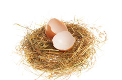 Single broken egg in nest Royalty Free Stock Image