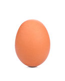 Single brown chicken egg isolated on white. Background Royalty Free Stock Image