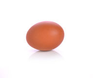 Single brown chicken egg isolated on white Royalty Free Stock Images