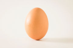 Single brown chicken egg. Stock Photo