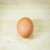 Single brown chicken egg Stock Photography