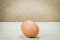 Single brown chicken egg Royalty Free Stock Image