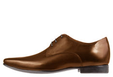 Single brown formal leather shoe Stock Image
