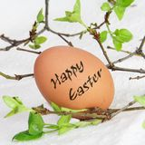 Single Brown Happy Easter Egg. One Brown Egg with Happy Easter Inscription Stock Image