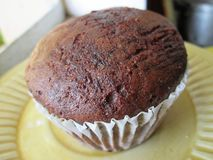 A Plain Brown Muffin In A Cup. Stock Images
