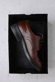 Single Brown Shoe in Black Box Royalty Free Stock Images