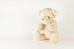 Single brown teddy bear. Single brown teddy bear on white background Stock Photos
