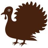 Single brown turkey Stock Photography