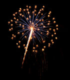 Single Burst of Fireworks on a Black Background Royalty Free Stock Image