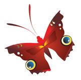 Single butterfly Stock Photo