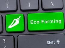 Single button with eco farming text Royalty Free Stock Photo
