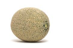 Single cantaloupe. On white background Royalty Free Stock Image
