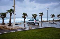 A single car on stormy winter seashore Royalty Free Stock Photos
