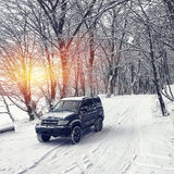 Single car on a winter road in the forest Royalty Free Stock Images