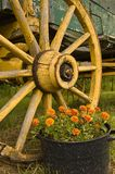 Single cart-wheel from a horse-drawn carriage stock images