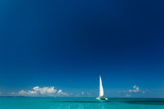 Single catamaran with tall white sail cruises in tropical waters in the British Virgin Islands. Single catamaran with tall white sail cruises in tropical royalty free stock photos