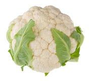 Single cauliflower Stock Photos