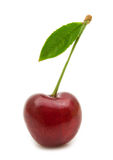 Single cherry Stock Photo