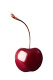 Single Cherry Royalty Free Stock Photography