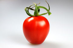 Single Cherry Tomato Stock Image
