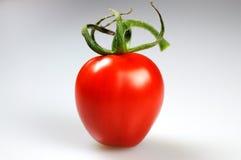 Single Cherry Tomato Stock Image