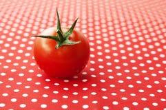 Single cherry tomato. Cherry tomato on a red and white polka dot table cloth Royalty Free Stock Photo