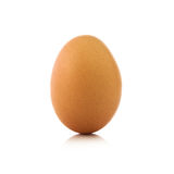 Single chicken egg Royalty Free Stock Images