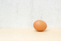 Single chicken egg still life on concrete wall. Picture stock image