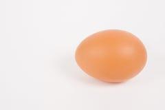 Single chicken egg Stock Photo