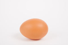 Single chicken egg Royalty Free Stock Photography