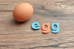 A single chicken egg with the word egg Stock Photography