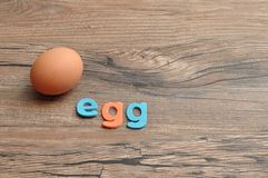 A single chicken egg with the word egg Royalty Free Stock Photo