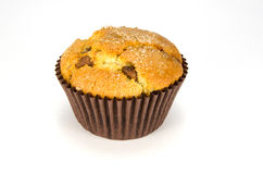 Single choc chip muffin. On white background royalty free stock photography