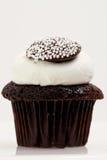 Single Chocolate Cupcake Stock Photos