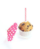 Single chocolate muffin with a candle. Isolated on white background Royalty Free Stock Photography