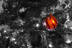 Single Christmas Bauble. A single, isolated, red and gold striped chirstmas bauble, against a Christmas tree Stock Image