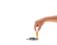 Single cigarette butt with ash Royalty Free Stock Photography