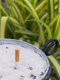 Single cigarette butt with ash in Pots of sand Stock Photo