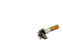 Single cigarette butt with ash Royalty Free Stock Photo